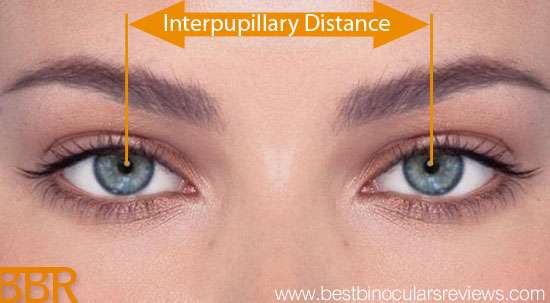 interpupillary-distance