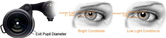 The relationship between the Exit Pupil and your eyes pupil diameter is important