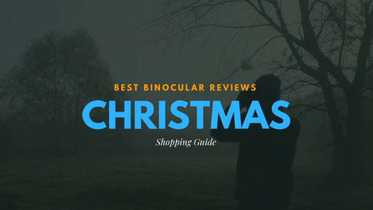 Binoculars for Christmas Title
