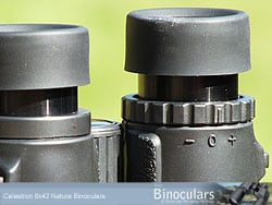 The eyecups and diopter adjustment ring on the Celestron Nature 8x42 Binoculars