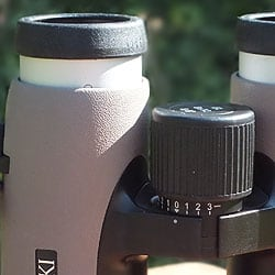 Diopter Adjustment on the Swarovski 8x32 EL W B Traveler Binoculars
