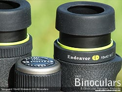 Eyecups on the Vanguard Endeavor ED 10x42 Binoculars