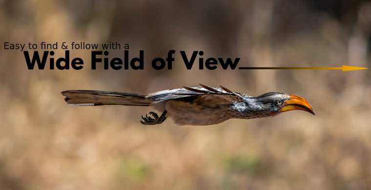 Wide Field of View makes it easier to find and follow birds