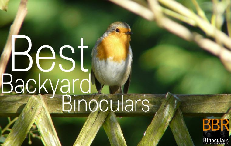 Backyard Bird Watching Binoculars | Guide To Backyard Binoculars For Birders