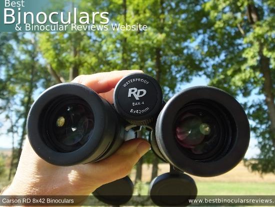 Adjusting the Focus Wheel on the Carson RD 8x42 Binoculars