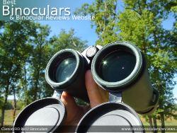 Reverse view through the Carson RD 8x42 Binoculars