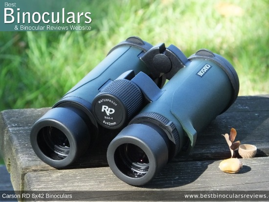 42mm Objective Lenses on the Carson RD 8x42 Binoculars