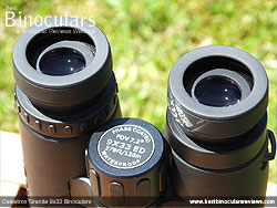 Eyecups on the Celestron Granite 9x33 Binoculars