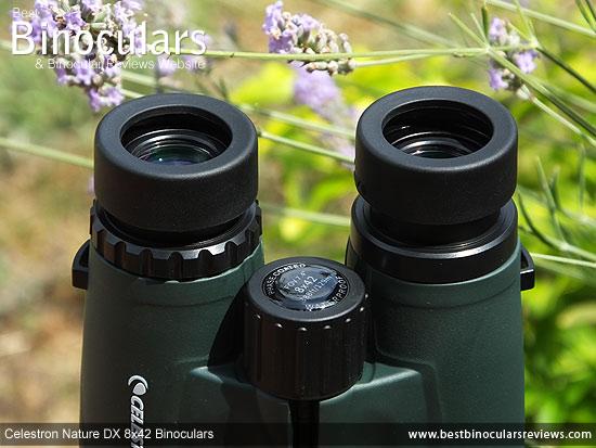 Focus Wheel on the Celestron Nature DX 8x42 Binoculars