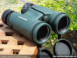Objective Lenses on the Celestron Nature DX 8x42 Binoculars