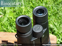 Eyecups on the Eagle Optics Denali 8x42 Binoculars