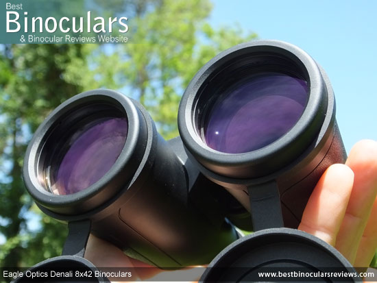 42mm Objective Lenses on the Eagle Optics Denali 8x42 Binoculars