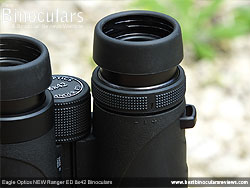 Diopter Adjustment on the Eagle Optics NEW Ranger ED 8x42 Binoculars