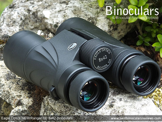 Focus Wheel on the Eagle Optics NEW Ranger ED 8x42 Binoculars
