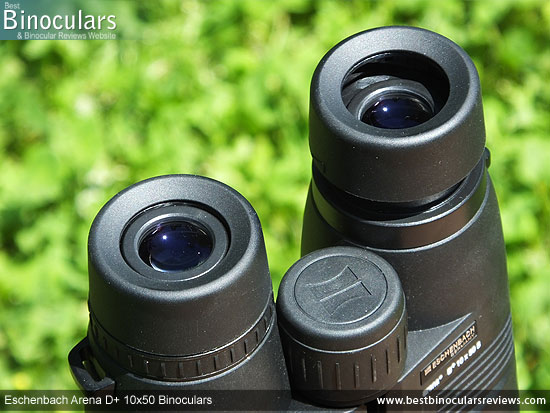 Eyecups on the Eschenbach Arena D+ 10x50 Binoculars