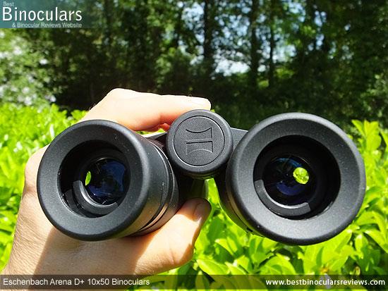 Focusing the Eschenbach Arena D+ 10x50 Binoculars