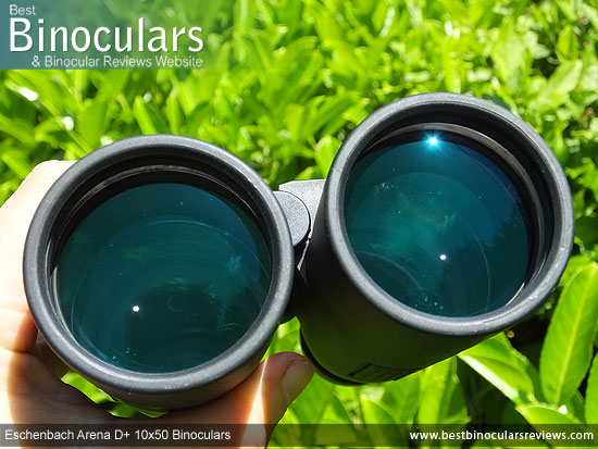 50mm Objective Lenses on the Eschenbach Arena D+ 10x50 Binoculars