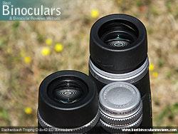 Eyecups on the Eschenbach Trophy D 8x42 ED Binoculars