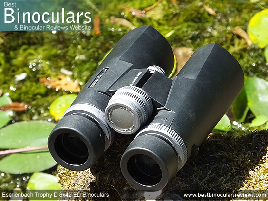Focus Wheel on the Eschenbach Trophy D 8x42 ED Binoculars