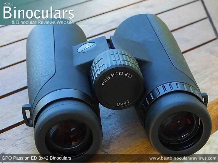 Eyecups and focus wheel on the GPO Passion ED 8x42 Binoculars