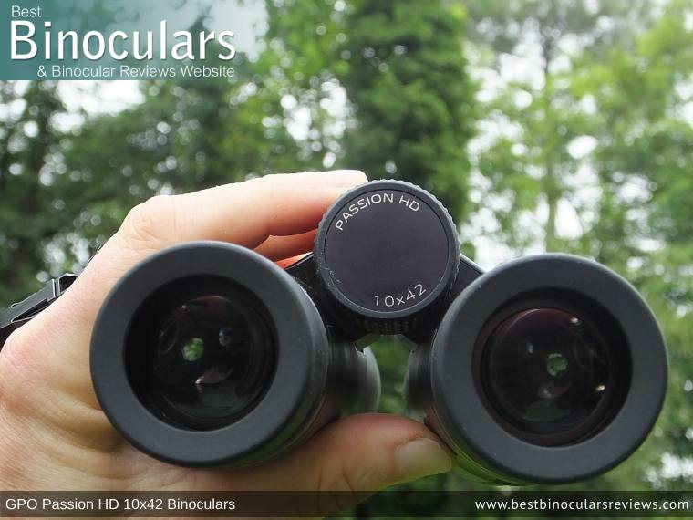 Adjusting the Focus Wheel on the GPO Passion HD 10x42 Binoculars