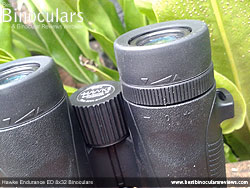 Diopter Adjustment on the Hawke Endurance ED 8x32 Binoculars