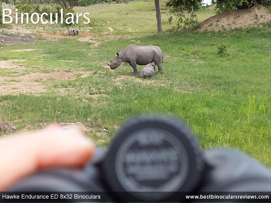 BBR On Safari With the Hawke Endurance ED 8x32 Binoculars