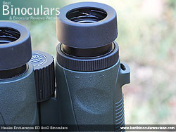 Diopter Adjustment on the Hawke Endurance ED 8x42 Binoculars