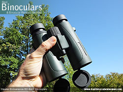 Open bridge design on the Hawke Endurance ED 8x42 Binoculars