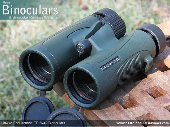 42mm Objective Lenses on the Hawke Endurance ED 8x42 Binoculars