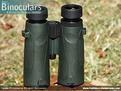Underside of the Hawke Endurance ED 8x42 Binoculars