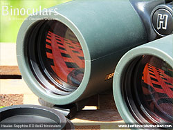 Objective Lenses on the Hawke Sapphire ED 8x42 Binoculars