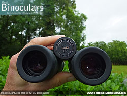 Open bridge design on the Helios Lightwing HR 8x42 Binoculars