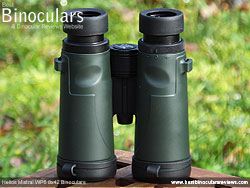 Rear of the Helios Mistral WP6 8x42 Binoculars