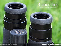 Eyecups on the Kite Ibis ED 8x42 Binoculars