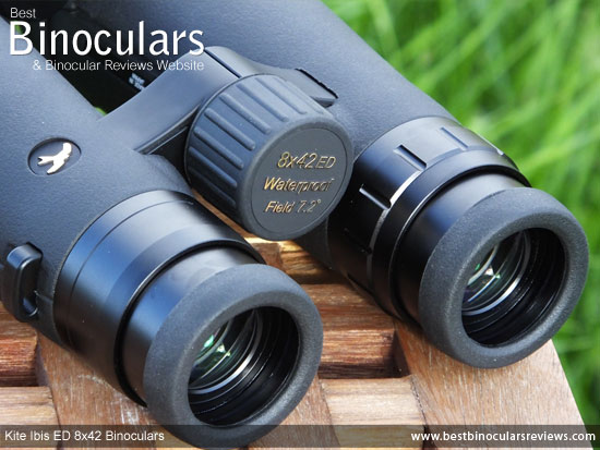 Focus Wheel on the Kite Ibis ED 8x42 Binoculars