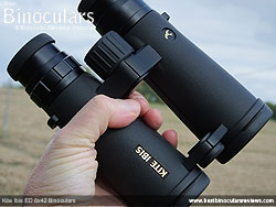 Openbridge design of the Kite Ibis ED 8x42 Binoculars