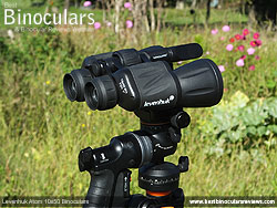 Tripod adaptable Levenhuk Atom 10x50 Binoculars on a tripod