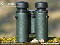 Underside of the Levenhuk Energy PLUS 8x25 Binoculars