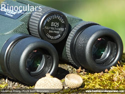 Eyecups on the Levenhuk Energy PLUS 8x25 Binoculars