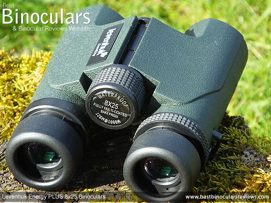 Focus Wheel on the Levenhuk Energy PLUS 8x25 Binoculars