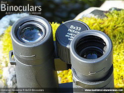 Eyecups on the Opticron Savanna R 8x33 Binoculars