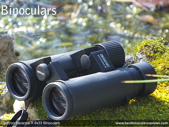 Opticron Savanna R 8x33 Binoculars on Safari - Viewing Black Rhinos