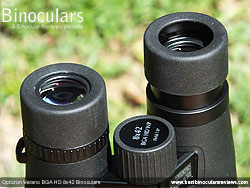Eyecups on the Opticron Verano BGA HD 8x42 Binoculars