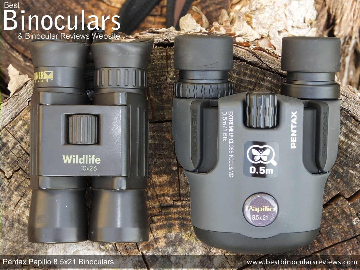 Guide To The Best Compact Binoculars That Will Fit In Your