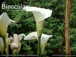 Sample Photo taken with the Pentax VM 6x21 WP Monocular & Microscope