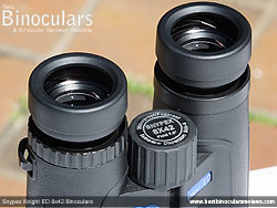Eyecups on the Snypex Knight ED 8x42 Binoculars