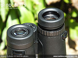 Eyecups on the Snypex Profinder HD 8x42 Binoculars