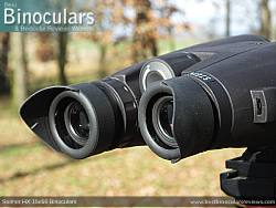 Eyecups on the Steiner HX 15x56 Binoculars