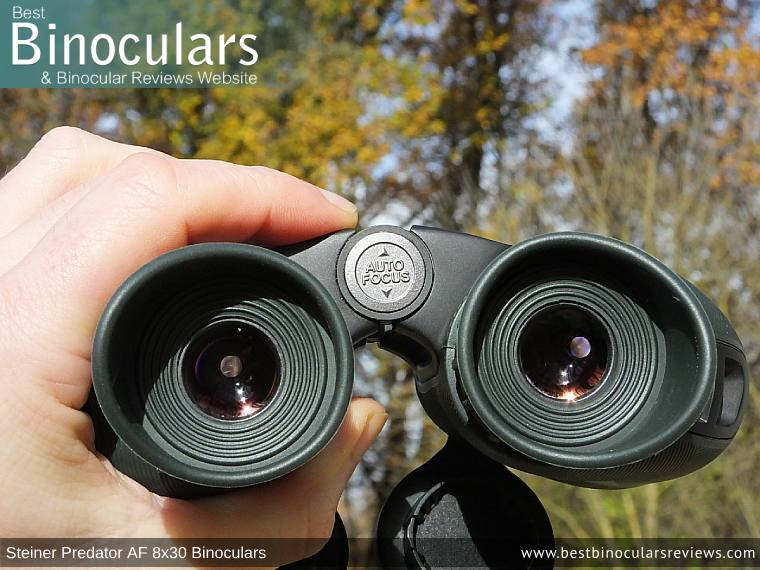 Focus Wheel on the Steiner Predator AF 8x30 Binoculars
